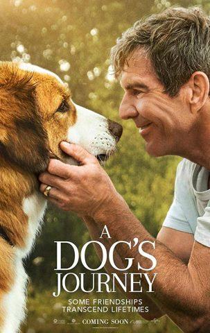 Pets Stream Movie2k